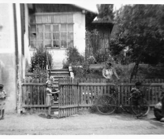 Blick in den Garten des Hauses Steinamangererstraße 19